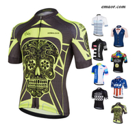 Biker Shorts Men Cycling Jersey Wear China Factory Bicycle Shirts Clothing Retro Crane Cheap Cycling Jerseys